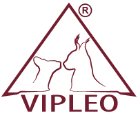 VIPLEO CATERRY